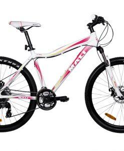 Tárcsafékes kerékpár