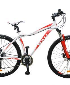 Tárcsafékes női montain bike
